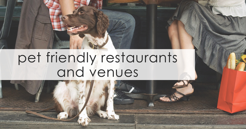 SA-Directory-Feature-Image-(Pet-Friendly-Restaurants-&-Venues)